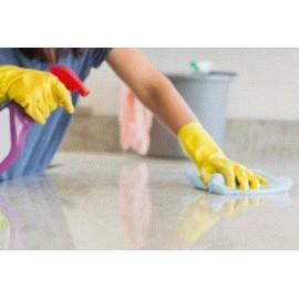 Désinfectants Ménagers