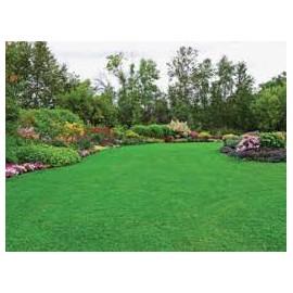 Jardins & Extérieurs